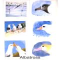 Albatross 2