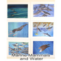 Marine Mammals and water1