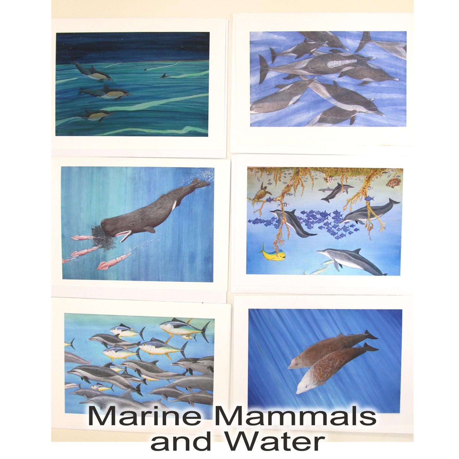 Marine mammals pictures - photo#26