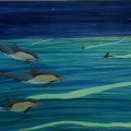 Dolphins and phosphoresence